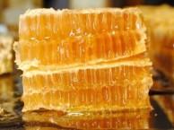 20年的养蜂人告诉您6招鉴别真假蜂蜜