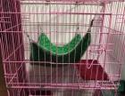 华美龙折叠小号三层猫笼子长61宽43高100