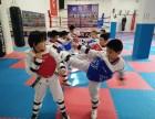 顺义地铁跆拳道散打武术女子防身术自由搏击泰拳