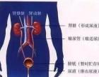 尿路结石是如不及时治疗,危害大