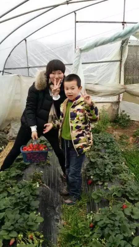 春节寒假 上海近郊哪里好玩 采草莓包汤圆 吃土菜游海边
