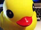 大黄鸭塑胶塘胶玩具 小鸭子宝宝洗澡玩具戏水儿童地摊热卖玩具