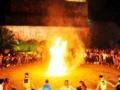 九龙溪首届帐篷营地节