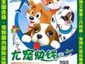 宁夏尤宠快线宠物托运更专业的宠物托运公司