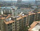 开发区高端小区半山国际楚雄人家瑞景家园金典温馨二居室仅售半山国际