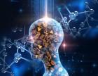 杭州少年编程 成为人工智能主导者