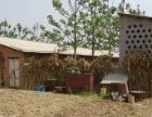 【地合网】三门峡灵宝市60亩园地 养殖场水浇地转让
