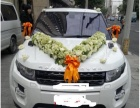 (带司机)平价小车,婚车 商务包车 出租!