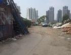 软件园二期附近钢结构厂房出租