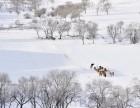初心户外冬日坝上 冬季到坝上看雪景 何必去雪乡