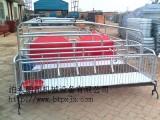 整体复合产床的价格 2头猪产床规格齐全