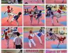 长沙洋湖景园专业散打跆拳道武术防身术培训