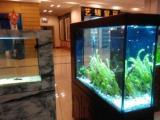 99成新鱼缸价格2100