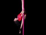 随州职业钢管舞学校 专业钢管舞学校 职业舞蹈教练