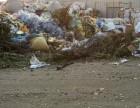 专业清理清运回收工业垃圾 固体垃圾 厂内积压垃圾