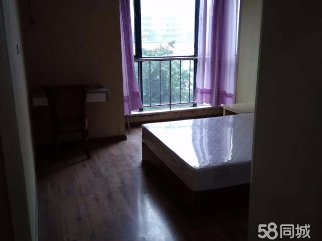 南坪 南岸区上海城 非中介 1室 1厅 97平米 整租
