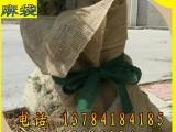 处理包树 包树根用麻袋片烟包片麻布 麻袋尺寸可定制量大优惠