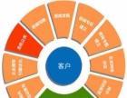 郑州SEO网站优化选天星,关键词先上百度首页再付费