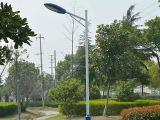 节能LED路灯当选河北桑能科技-呼伦贝尔LED路灯多少钱