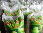 陕西陇县现有加工好100吨现货核桃对外出售诚邀客商