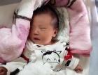 南京艾月儿母婴护理服务中心