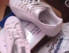 阿迪达斯41白色板鞋美国代购正品