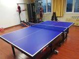 红双喜乒乓球台厂家 乒乓球桌厂 需求者请速联系