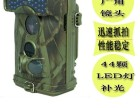 北京红外感应相机ltl6310wmc销售
