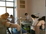 大同摩登宠物培训学校开始面向全国招生了