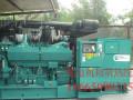 珠海大型柴油发电机出租