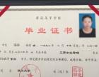 2017年淄博成人高考 网络教育 报名地址