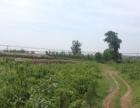 汇川路 舒坪镇---富权镇 土地 12000平米