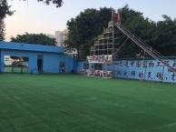 深圳专业狗狗学校改变狗狗从现在开始