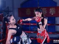 我们强力推荐江岸区泰拳散打女子防身术 跆拳道 培训