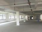 平阳滨海新区厂房一个层面3600平米出租适合各行业