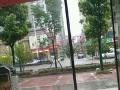 平江 平江县繁华地段 商业街卖场 40平米