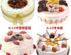 长沙罗莎生日蛋糕配送芙蓉天心岳麓开福雨花望城宁乡浏阳