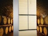 行业领先的恺威尼尔森冰箱,恺威尼尔森恺威尼尔森冰箱新报价