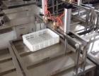 腐竹加工设备 手工豆油皮机 豆腐皮机