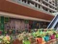 朝阳区一手商铺、恒大打造、墒场旁边、展示面8米