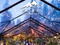 菏泽展览帐篷、欧式帐篷、会展帐篷、出租销售-高山