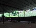 双河口 厂房仓库 1200平米 出租