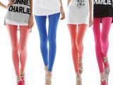 批发糖果色莫代尔韩版夏季显瘦薄款大码高弹棉七分九分打底裤女裤