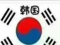 专业办理韩国5年签证申请,欧美澳洲意大利新加坡签证申请