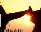 中山跆拳道培训,少儿寒假培训班,师资力量雄厚的正规武馆