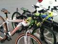 盐城实体店销售 品牌山地车自行车380元 实体店质量有保证 免费