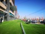 大学城12.69平米8.5万出售独立产权