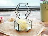 情人节包装盒玻璃花房 多肉植物永生花玻璃罩苔藓微景观玻璃瓶