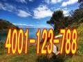 欢迎访问(丹阳小天鹅洗衣机官方网站)各点售后服务咨询电话