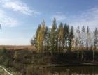 位于敦化高速路出口旁水库出售平米
